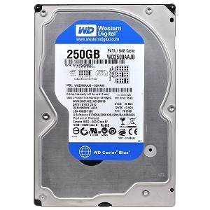 WD 250GB IDE Desktop HD